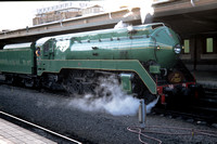 TD20001617 - Australia NSWGR Class 38, 3801 at Sydney Central - 29-10-2000 - After arrival on return - Trevor Davis