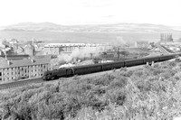 A panoramic shot nr Upper Greenock with 42270 (LF) on 4.25p.m. Central-Wemyss Bay, looking over the port, warehouses,tenements of Greenock and across to north shore of Firth of Clyde on 15/8/59 WS3823