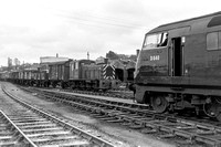 D840 cab with D2127 ( - ) St. Blazey (passing shed) 04.04.67 V66-5
