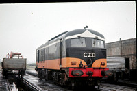 JMT9010 - Ireland CIE  C233 at Wexford North - 06-06-1964 - On shed  - John Tolson