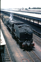BW2889 - Rhodesia RR Class 16A, 645 at Bulawayo - 07-11-1978 - On engineers  - Builder BP 7523-1953  - Brian Walker